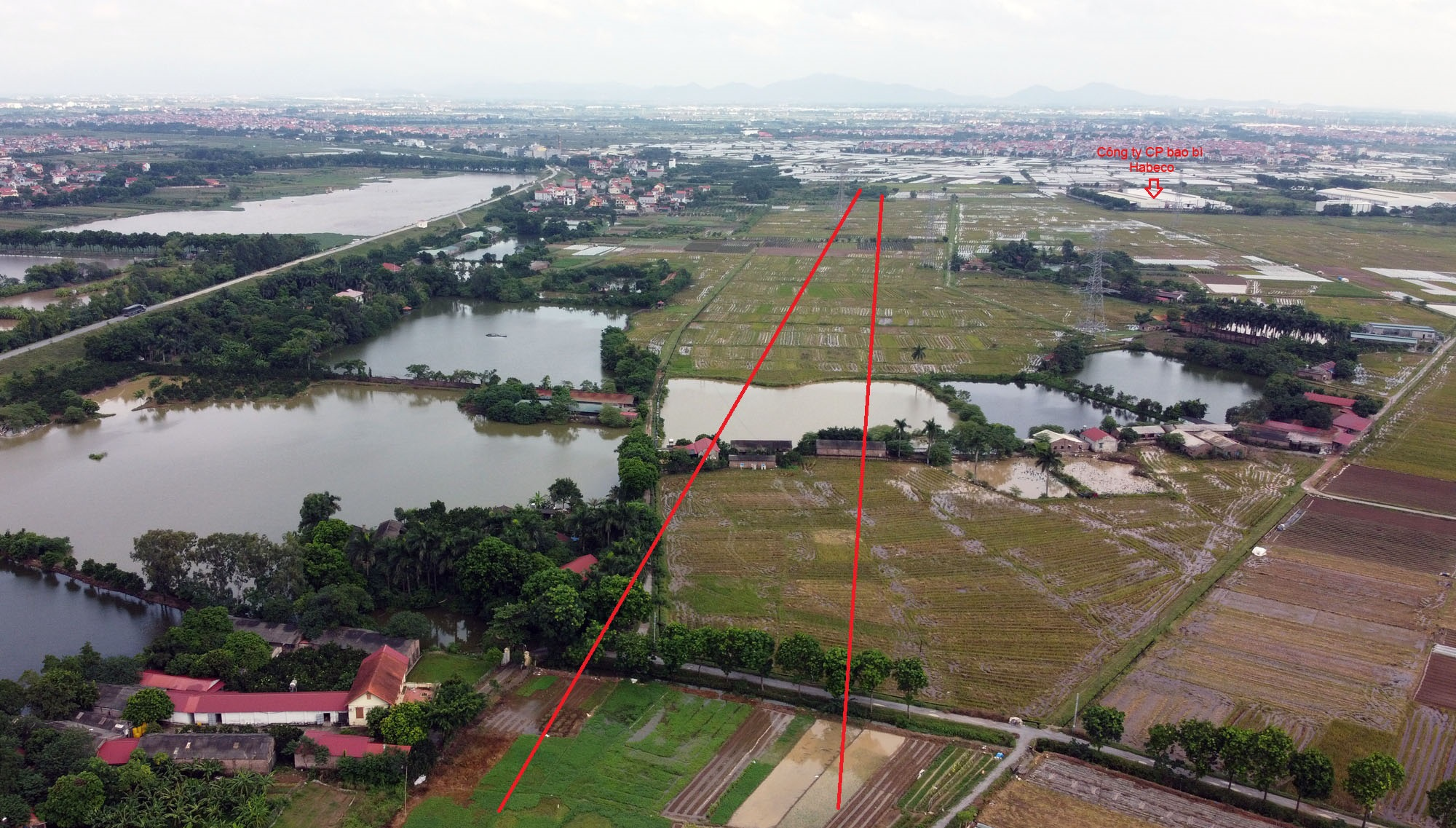 Ba đường sẽ mở theo qui hoạch ở xã Đại Mạch, Đông Anh, Hà Nội - Ảnh 14.