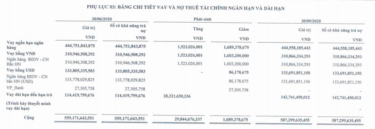 FTM lỗ quí thứ 7 liên tiếp, gần 300 tỉ đồng lãi vay phải trả cho ngân hàng - Ảnh 3.