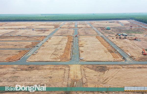 Đồng Nai chốt giá khởi điểm bán đấu giá hai khu đất 45 ha tại TP Long Khánh và huyện Long Thành - Ảnh 1.