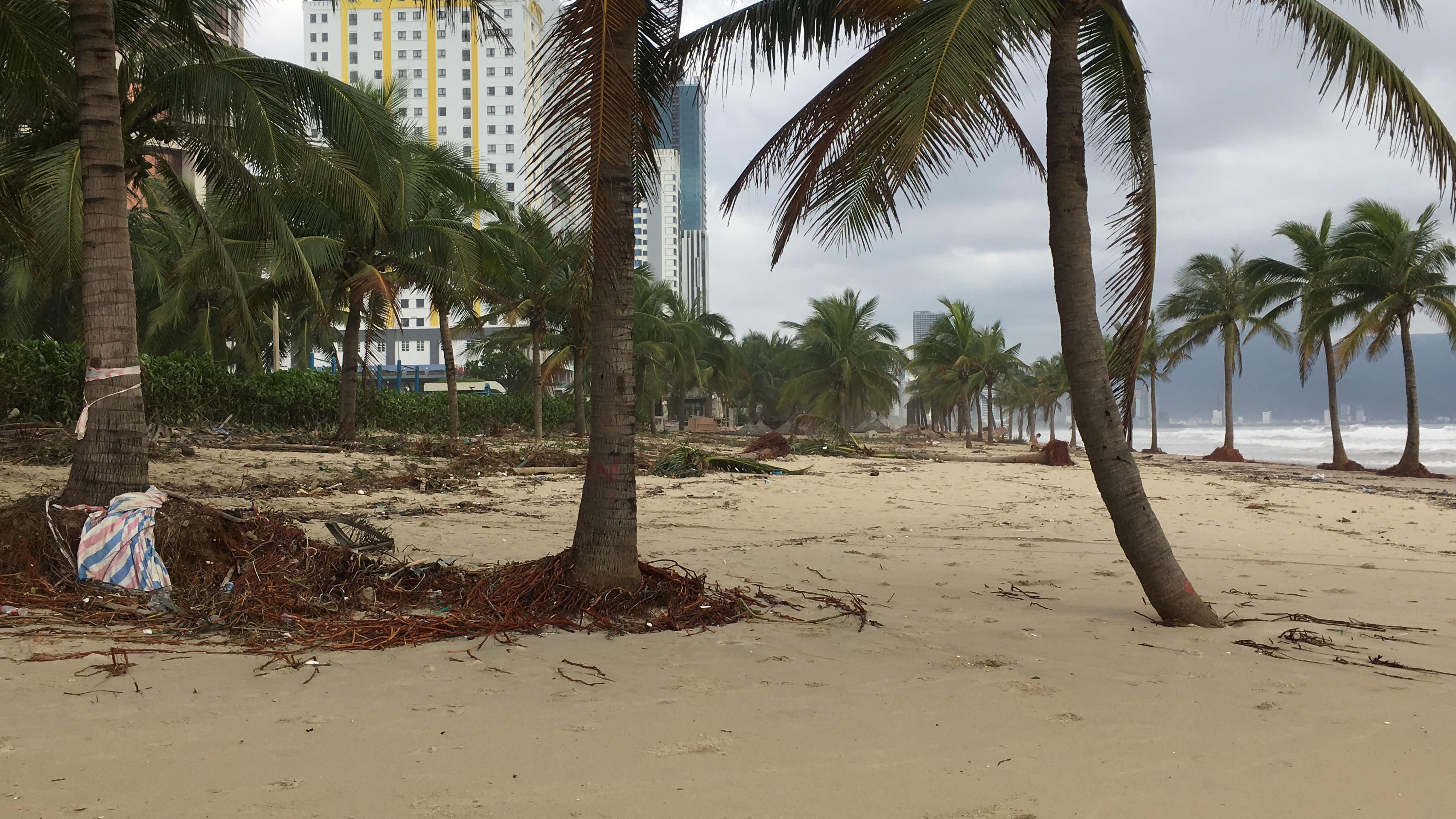 Đà Nẵng tiêu điều do bão số 9 quật phá - Ảnh 26.