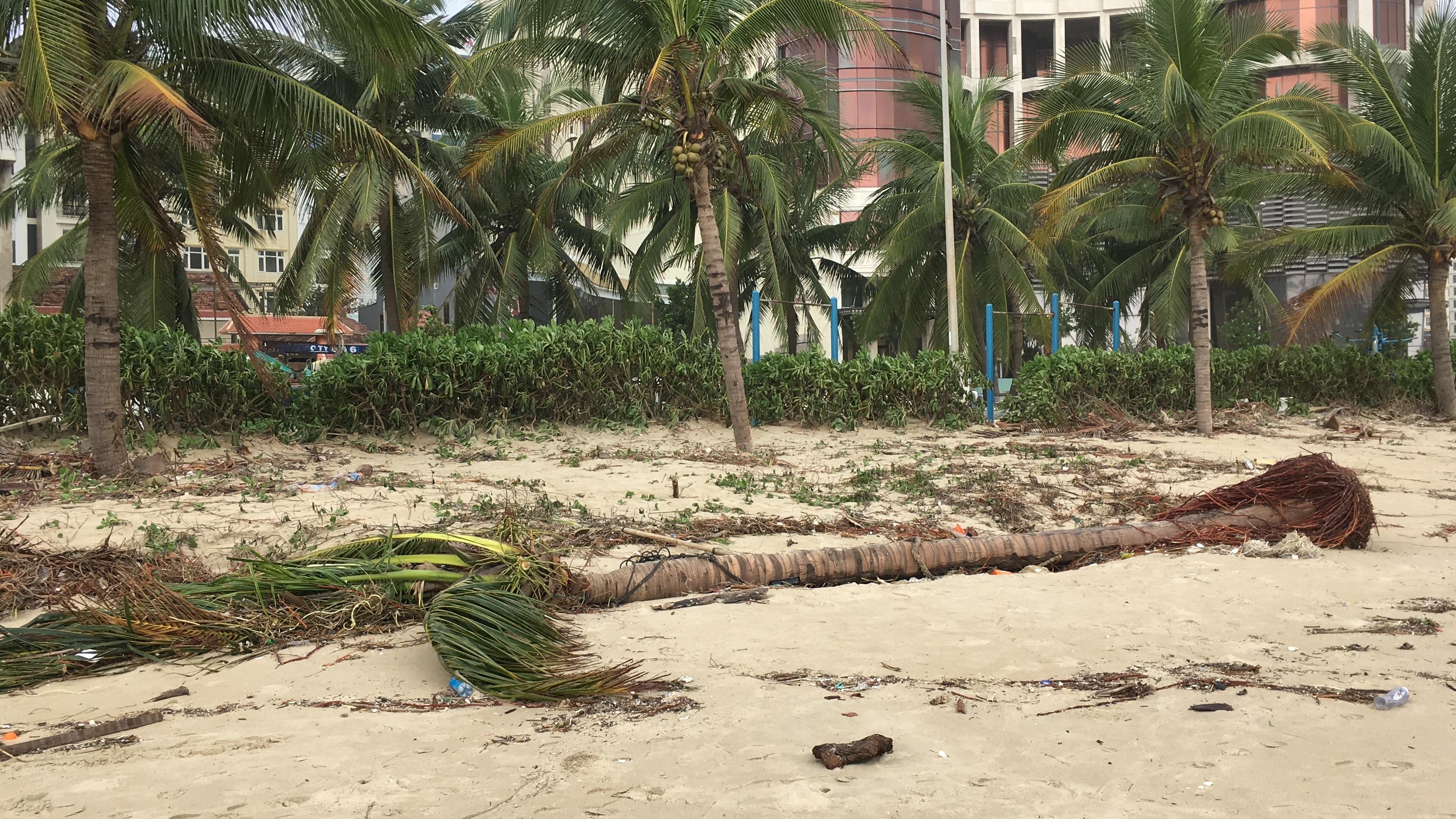 Đà Nẵng tiêu điều do bão số 9 quật phá - Ảnh 27.