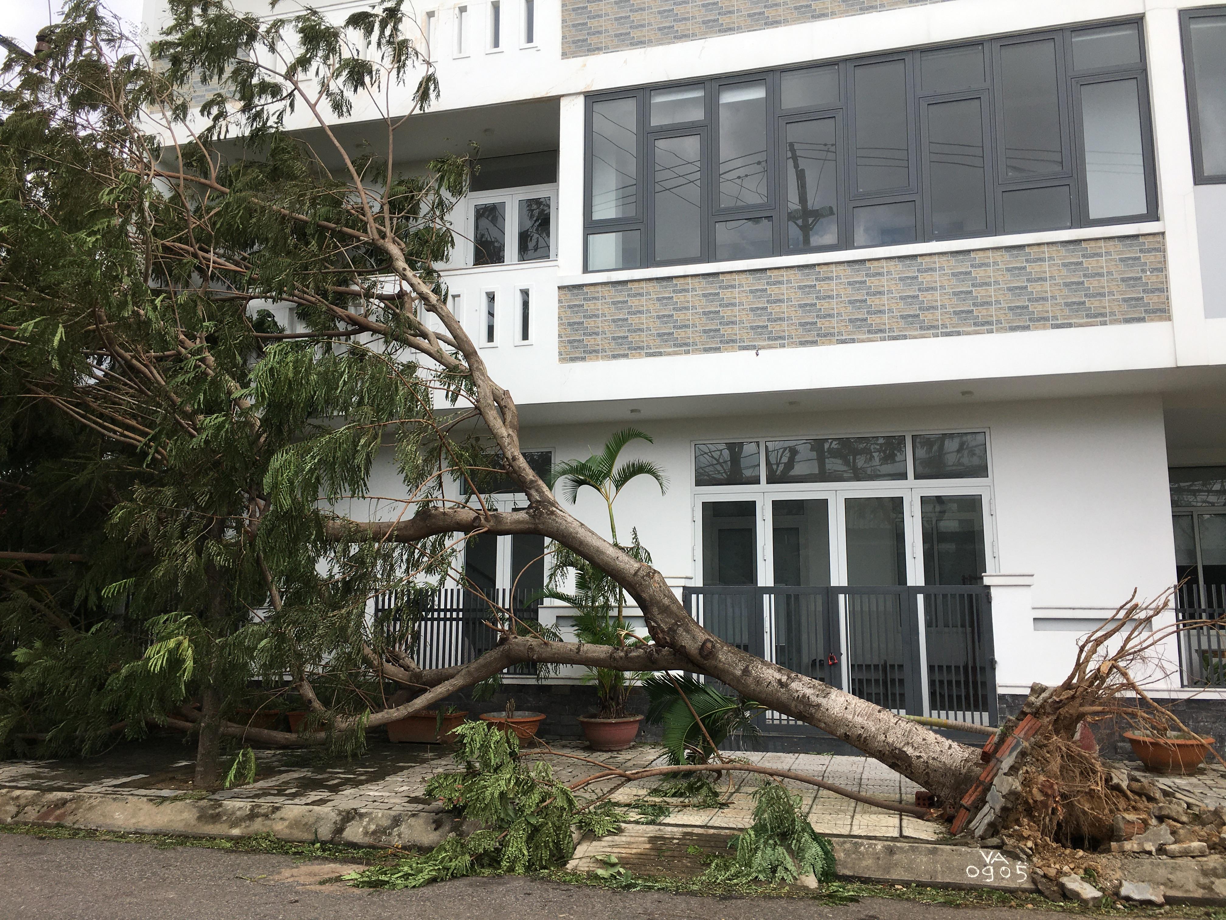 Đà Nẵng tiêu điều do bão số 9 quật phá - Ảnh 16.