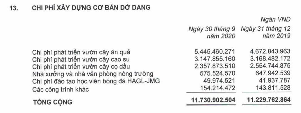 HAGL lỗ sau thuế quí III gần 570 tỉ đồng do không còn nguồn thu tài chính - Ảnh 2.