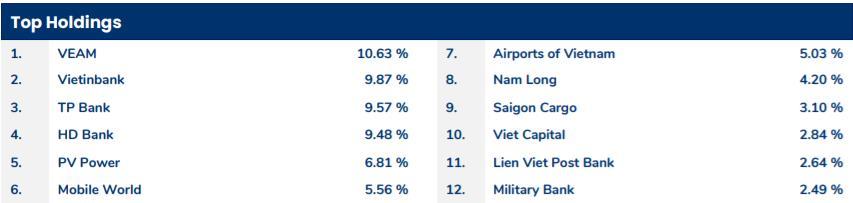 Pyn Elite Fund đã có lãi nhờ cổ phiếu ngân hàng, đánh giá chứng khoán Việt Nam vẫn rẻ - Ảnh 1.