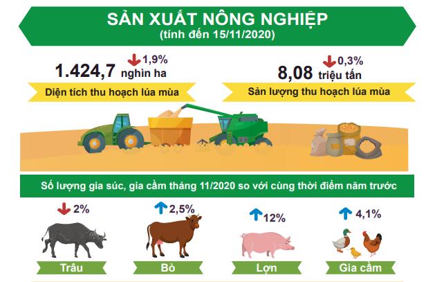 [Infographic] Bức tranh toàn cảnh nền kinh tế Việt Nam 11 tháng đầu năm 2020 - Ảnh 3.