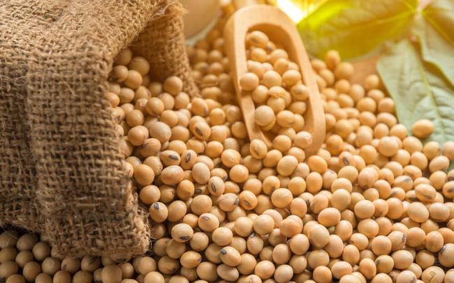 Xuất nhập khẩu Việt Nam và Argentina tháng 9/2020: Nhập khẩu đậu tương tăng trưởng mạnh - Ảnh 1.