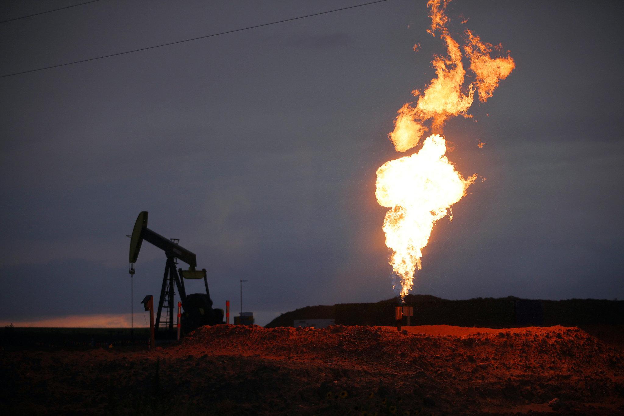 Giá gas hôm nay 5/11: Nhu cầu tiêu thụ thấp, giá gas giảm trở lại - Ảnh 1.