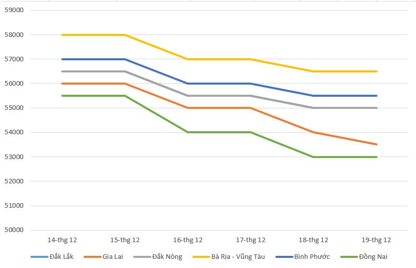 Giá cà phê hôm nay 20/12: Thị trường cà phê điều chỉnh nhẹ, giá tiêu giảm đến 2.500 đồng/kg - Ảnh 2.