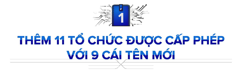 Ví điện tử Việt 2020: 9 cái tên mới, siết tính ẩn danh và thị trường tiếp tục phân mảnh - Ảnh 1.