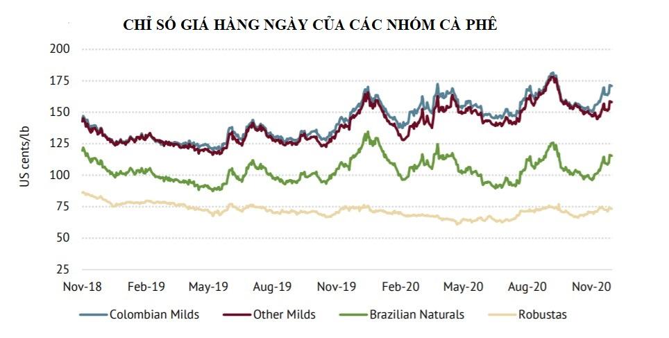 ICO: Chỉ số giá cà phê ICO tháng 11 tăng 3,6%                                      - Ảnh 2.