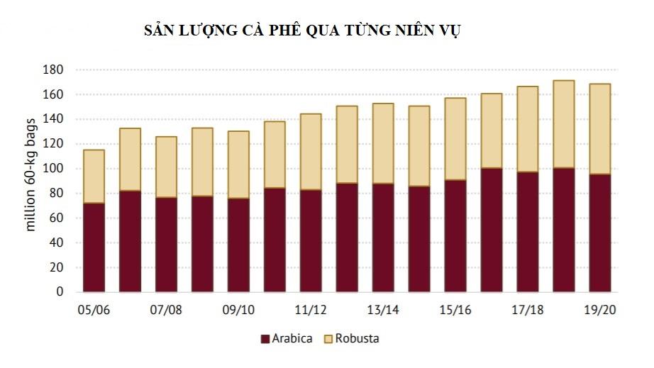 ICO: Sản lượng cà phê toàn cầu niên vụ 2019 - 2020 giảm 1,6% so với niên vụ trước - Ảnh 2.