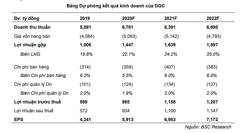 DGC - Ảnh 3.