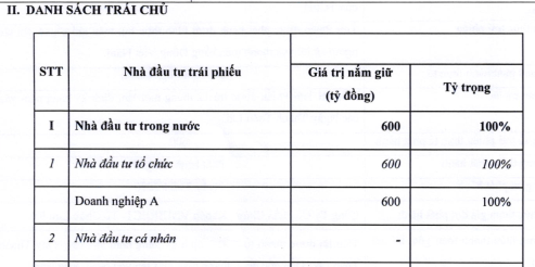 Hai 'doanh nghiệp A' mua trọn 1.000 tỉ trái phiếu của HDBank - Ảnh 2.