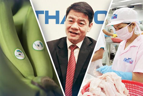 Vua cá tra Hùng Vương và công ty nông nghiệp của bầu Đức đang ra sao từ khi Thaco tham gia tái cấu trúc? - Ảnh 1.