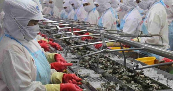 VASEP:  Tôm Việt Nam có nhiều cơ hội xuất khẩu sau khi dịch COVID-19 được khống chế - Ảnh 1.