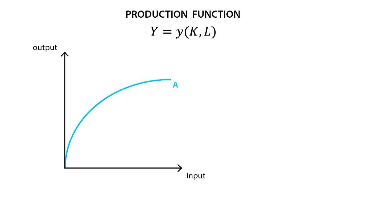 Hàm sản xuất (Production Function) là gì? - Ảnh 1.
