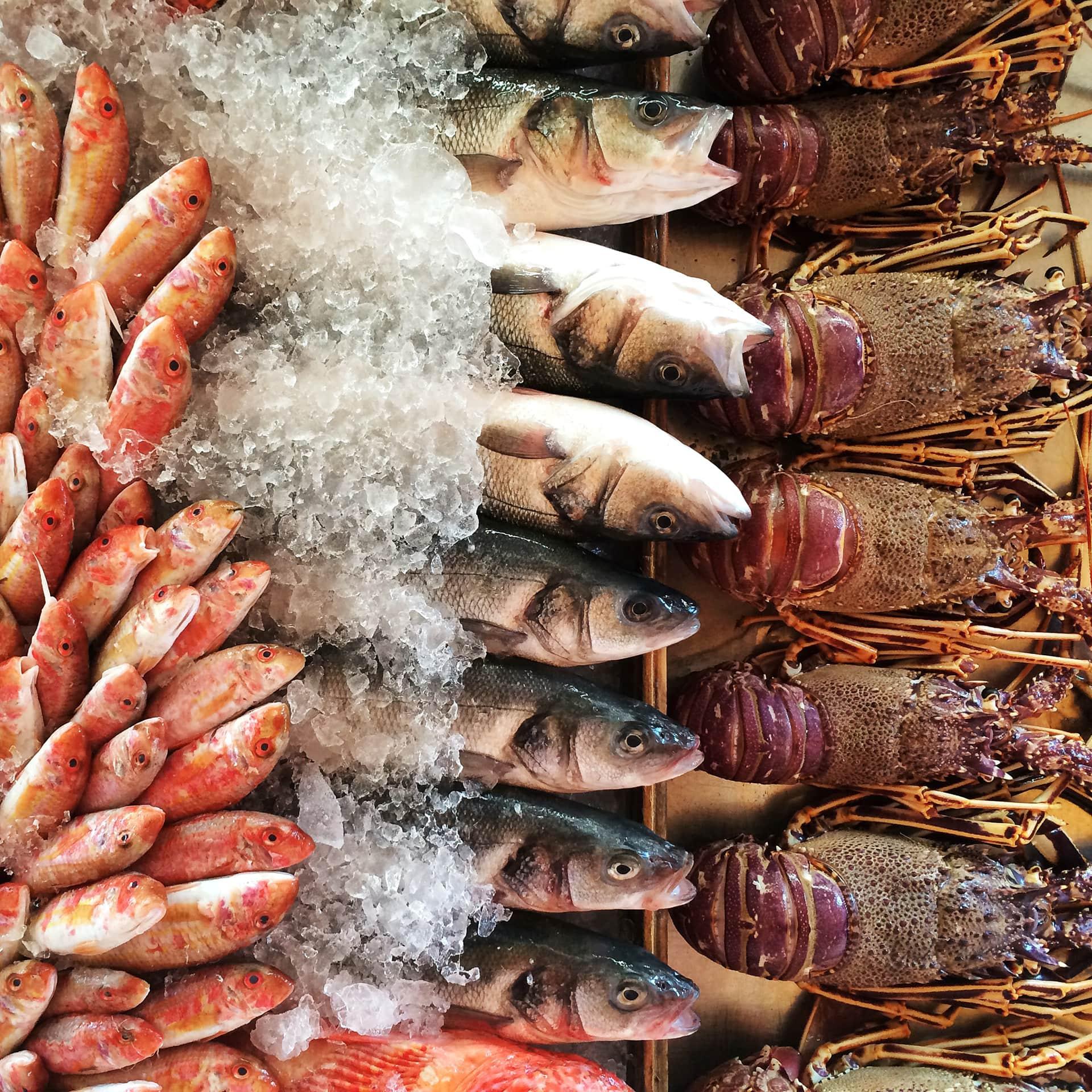 Danh sách doanh nghiệp Algeria nhập khẩu thủy sản - Ảnh 1.