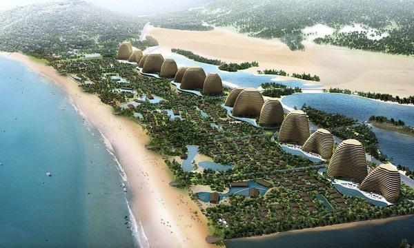 Ninh Thuận: Ba dự án nghỉ dưỡng xin chuyển đất rừng, có một vướng quốc phòng - Ảnh 1.