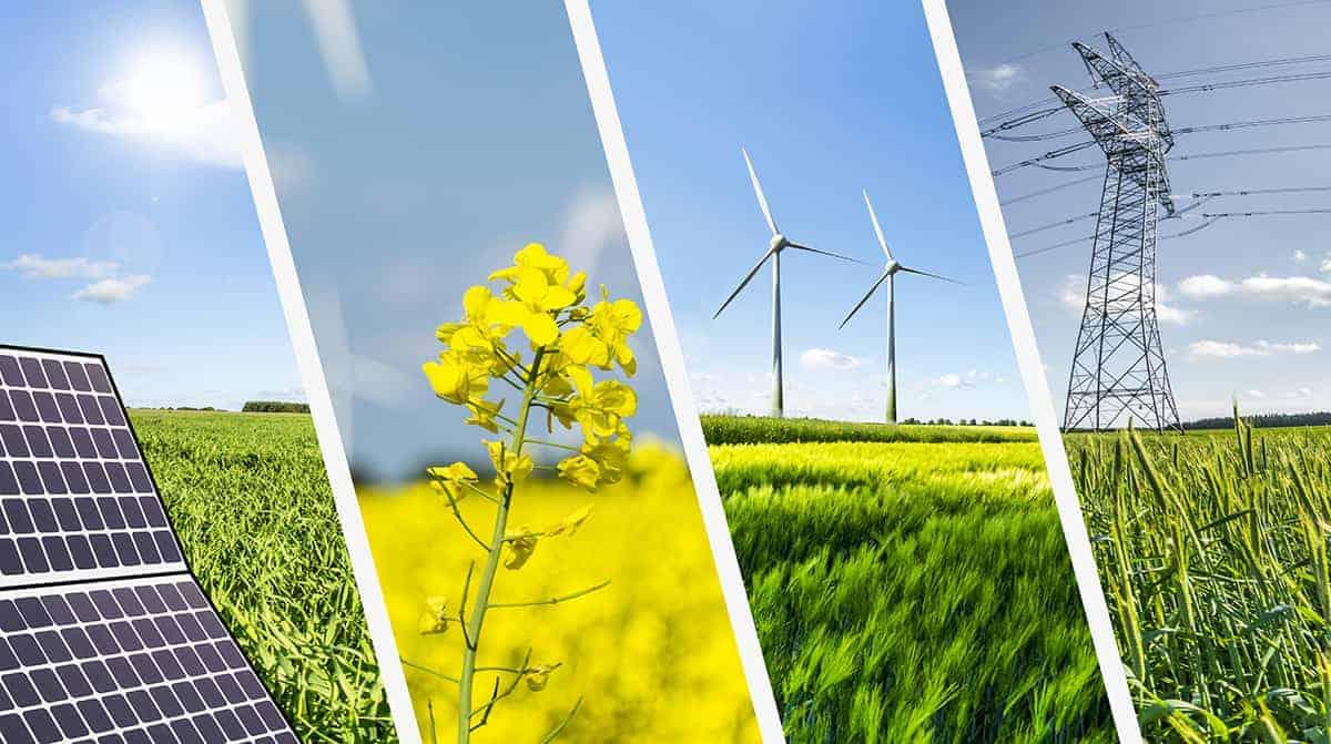 Năng lượng tái tạo phải là trọng tâm của kế hoạch khôi phục kinh tế hậu COVID-19 - Ảnh 1.