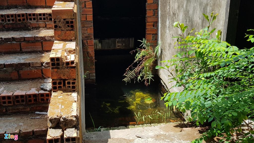 Nhiều căn nhà bỏ hoang trong khu dân cư của đại gia Sóc Trăng - Ảnh 4.