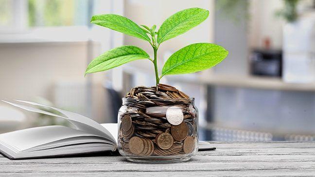 Đầu tư với tiết kiệm: Bạn nên cân bằng như thế nào? - Ảnh 1.