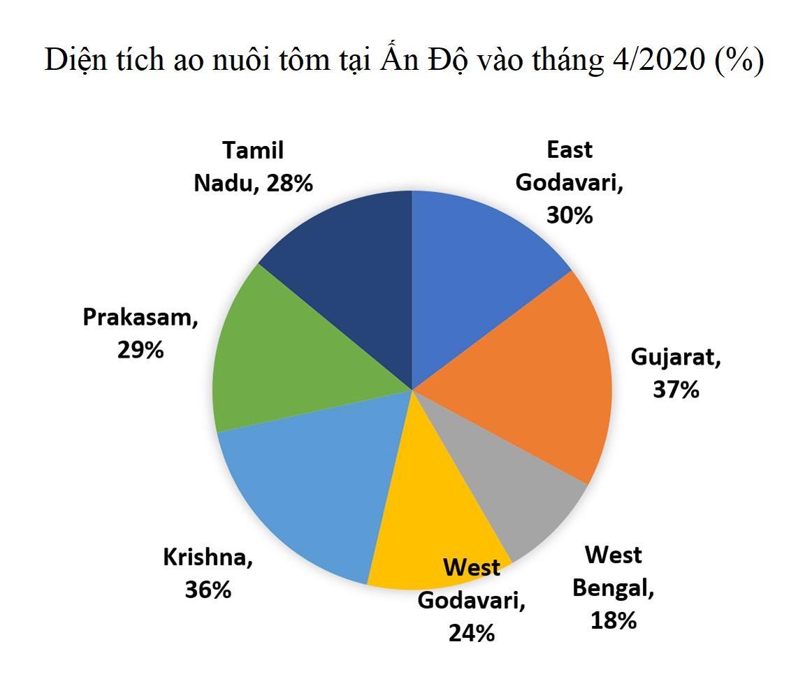Dịch COVID-19 ảnh hưởng như thế nào tới ngành tôm Ấn Độ? - Ảnh 3.