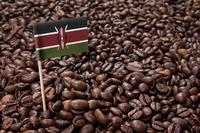 USDA: Sản xuất cà phê Kenya năm 2020 - 2021 ngưng trệ  - Ảnh 1.