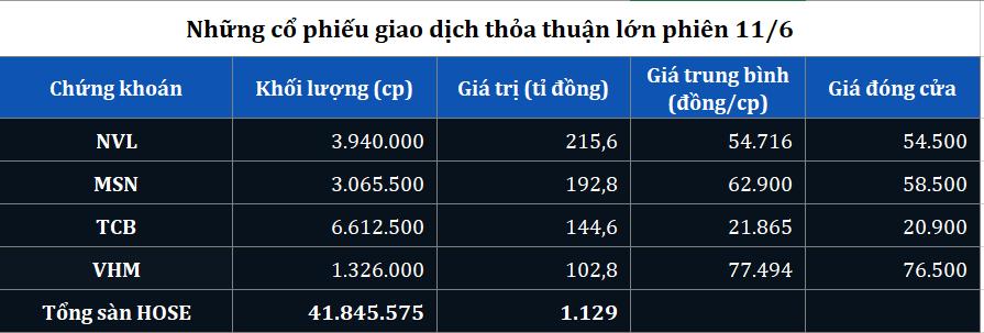 Giao dịch thỏa thuận lớn NVL, TCB, MSN, VHM phiên 11/6 - Ảnh 1.