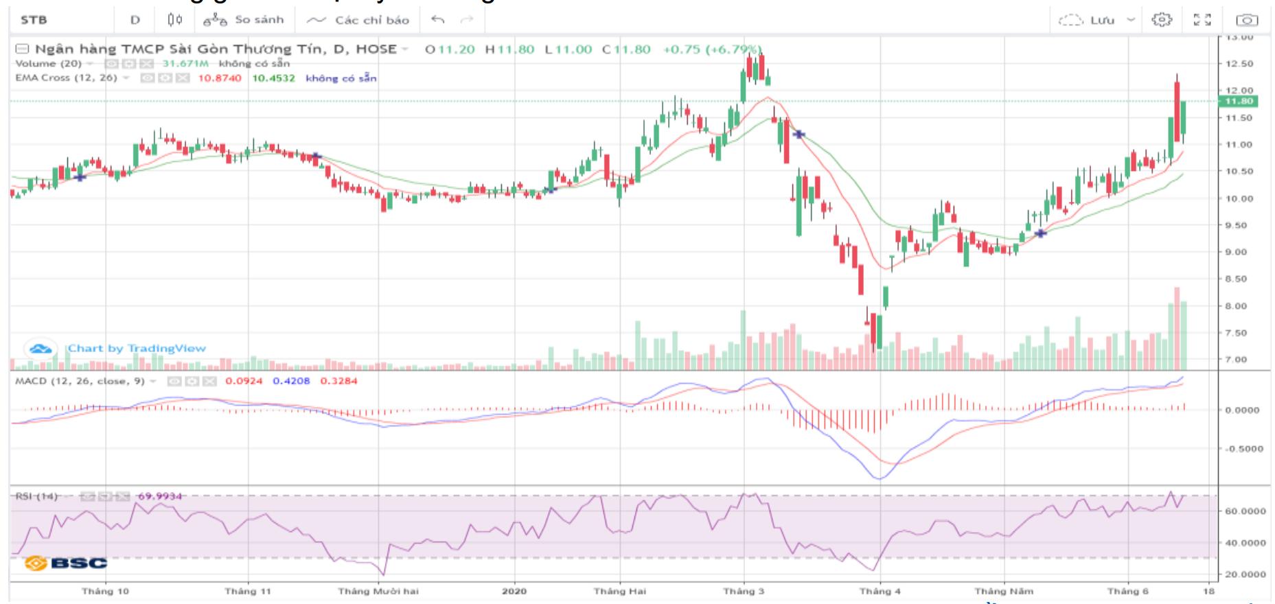 Cổ phiếu tâm điểm ngày 15/6: STB, CRE, NVL, SJS, CMG - Ảnh 1.