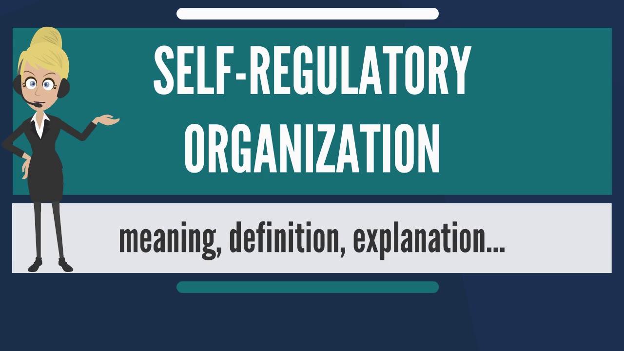 Tổ chức tự điều chỉnh (Self-regulatory organization - SRO) là gì? Đặc điểm - Ảnh 1.