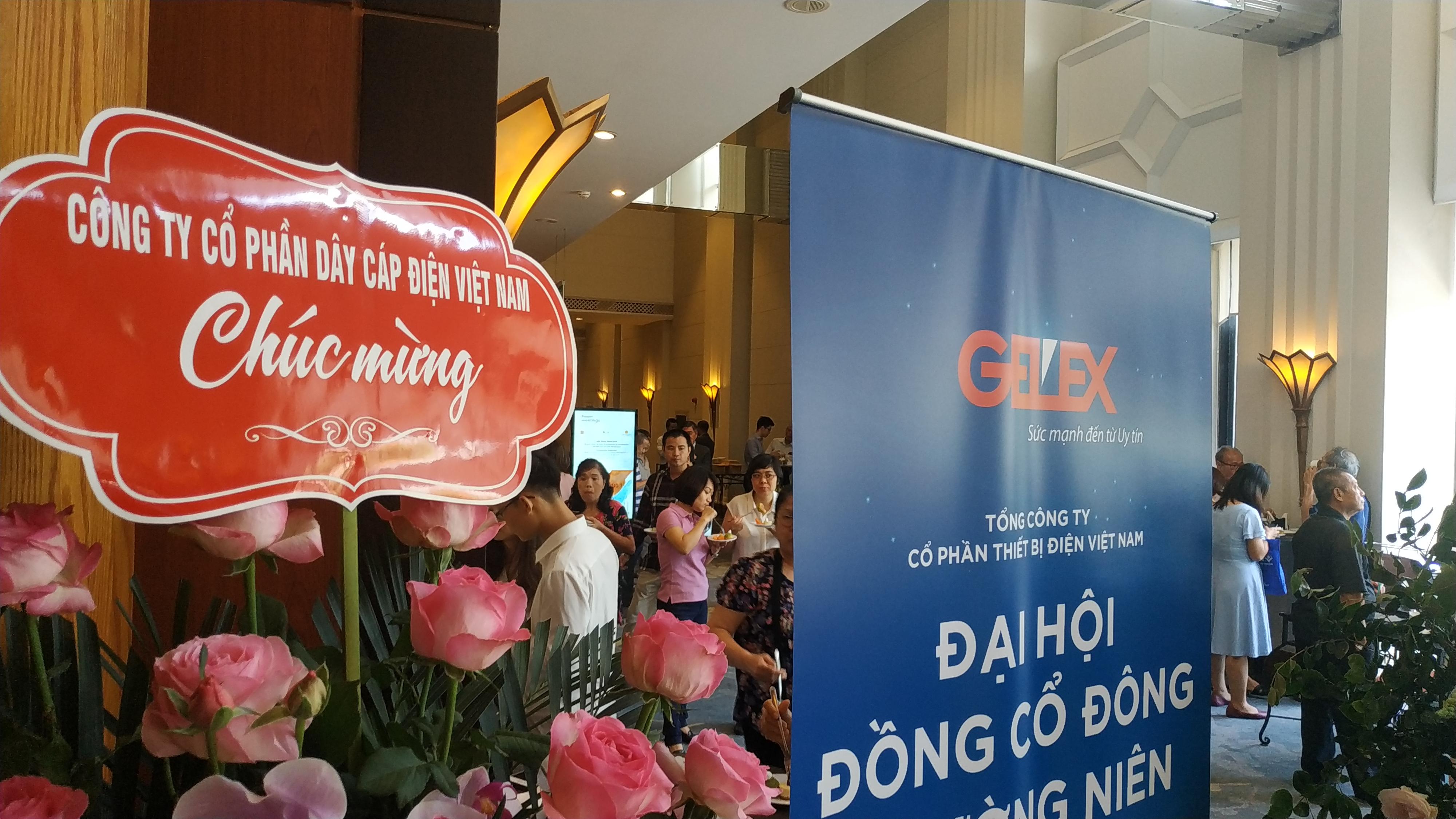 Chủ tịch Gelex đã chi khoảng 250 tỉ đồng mua 15 triệu cổ phiếu GEX - Ảnh 1.