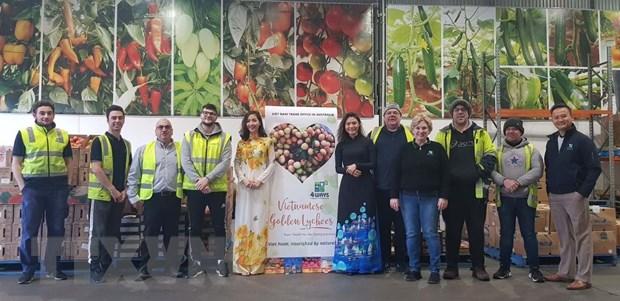 Việt Nam tổ chức sự kiện quảng bá vải U hồng tại Australia - Ảnh 1.