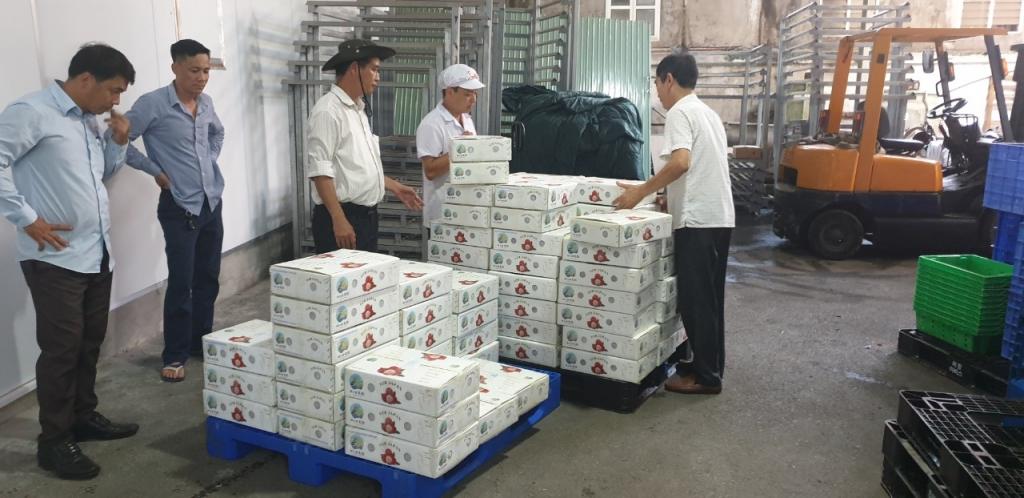 Lô vải thiều Việt Nam đầu tiên tại Nhật Bản bán với giá hơn 200.000 đồng/kg cháy hàng - Ảnh 1.