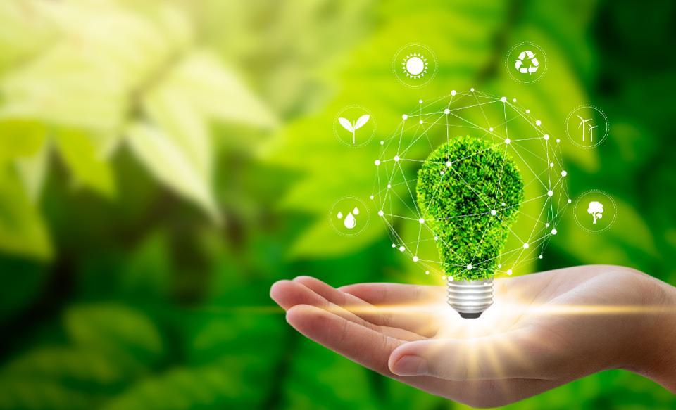 Sau coronavirus: Đầu tư tập trung vào tính bền vững như bình thường mới? - Ảnh 1.