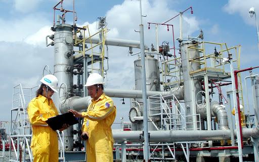 PV Gas sẽ chi gần 6.700 tỉ đồng thanh toán cổ tức còn lại năm 2019 - Ảnh 1.