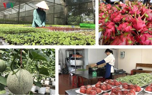 Trung Quốc tăng cường các biện pháp quản lí nguồn gốc thực phẩm - Ảnh 1.