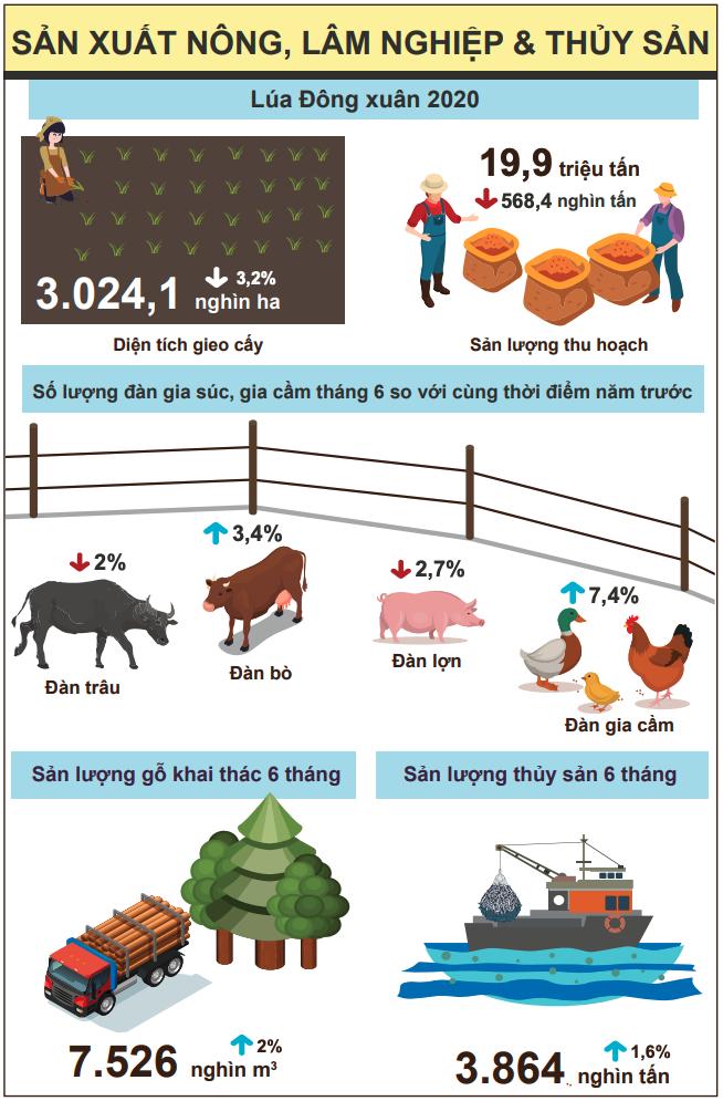[Infographic] Bức tranh toàn cảnh nền kinh tế Việt Nam 6 tháng đầu năm 2020 - Ảnh 2.