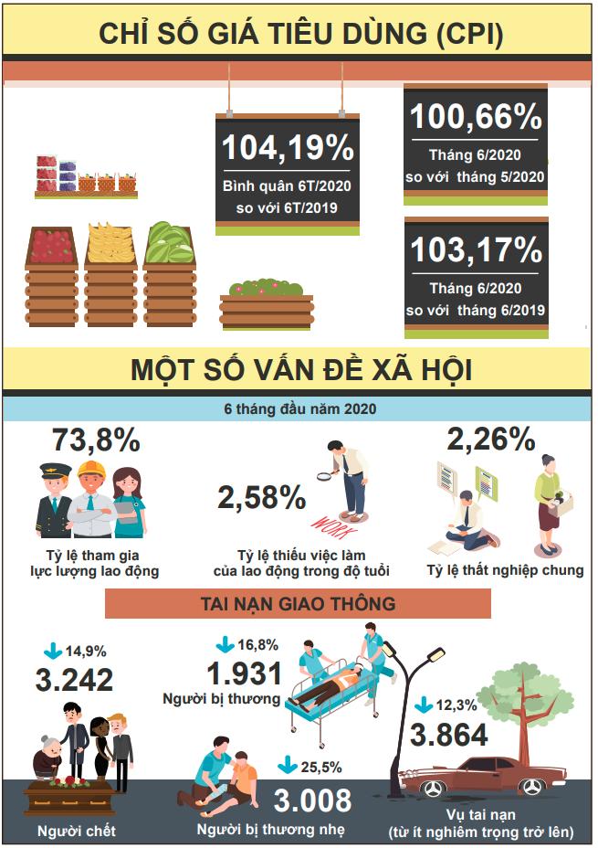 [Infographic] Bức tranh toàn cảnh nền kinh tế Việt Nam 6 tháng đầu năm 2020 - Ảnh 6.