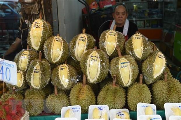 Thái Lan phát triển hộp chống mùi để bảo quản sầu riêng khi vận chuyển - Ảnh 1.