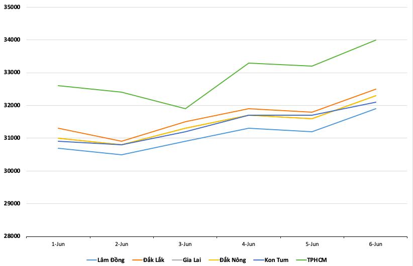 Giá cà phê hôm nay 7/6: Tăng 1.200 - 1.400 đồng/kg trong tuần qua, giá tiêu quay đầu giảm - Ảnh 1.