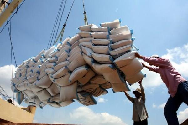 Bản tin thị trường gạo tuần 23/2020: Xuất khẩu gạo Việt Nam nửa đầu năm kì vọng đạt 3,7 triệu tấn - Ảnh 1.