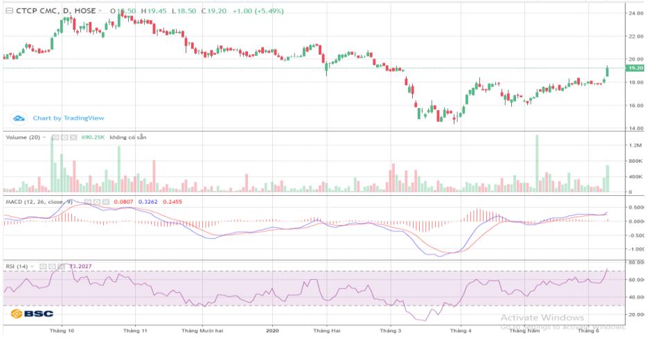 Cổ phiếu tâm điểm ngày 10/6: CVT, BMP, VJC, VTK, PVB - Ảnh 1.