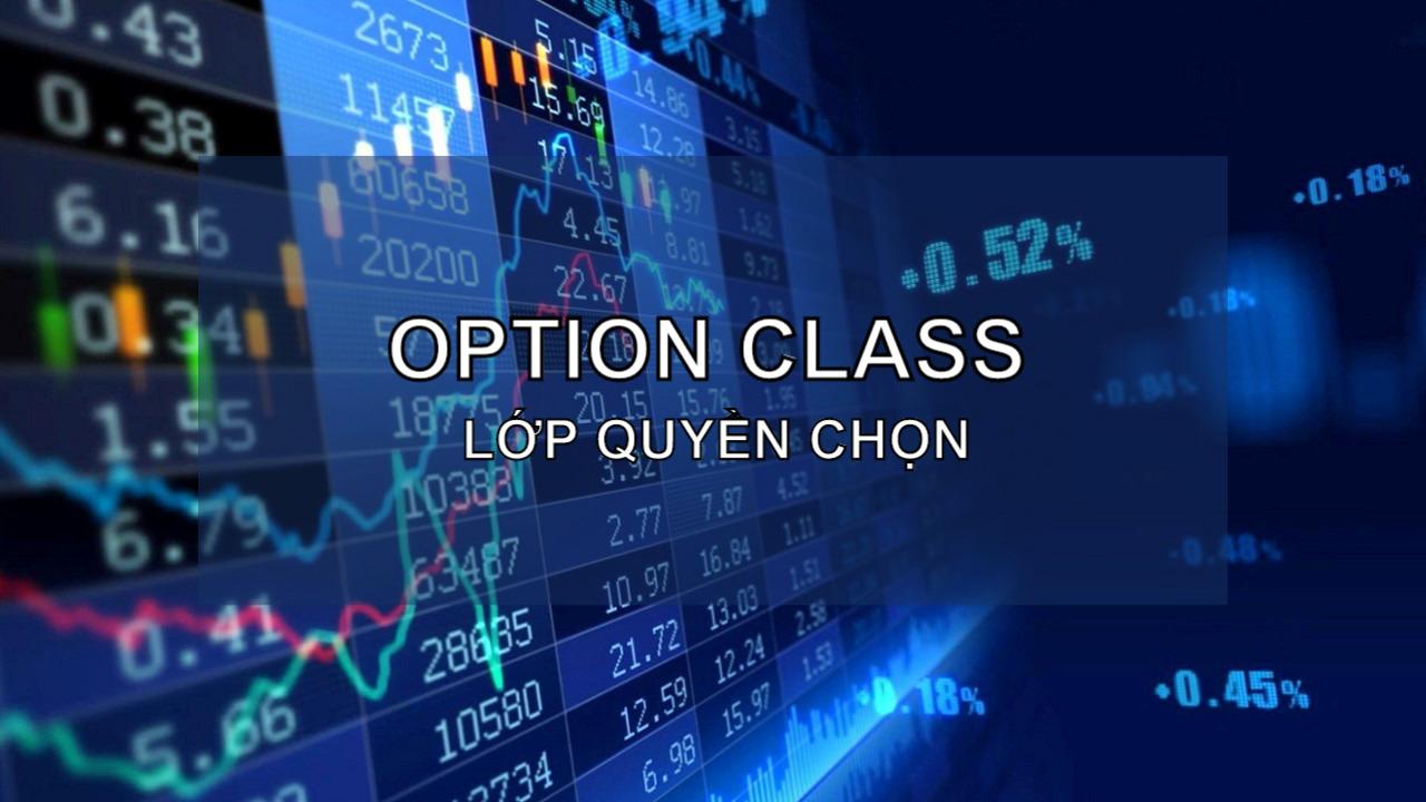 Lớp quyền chọn (Option Class) là gì? Đặc điểm và ví dụ - Ảnh 1.