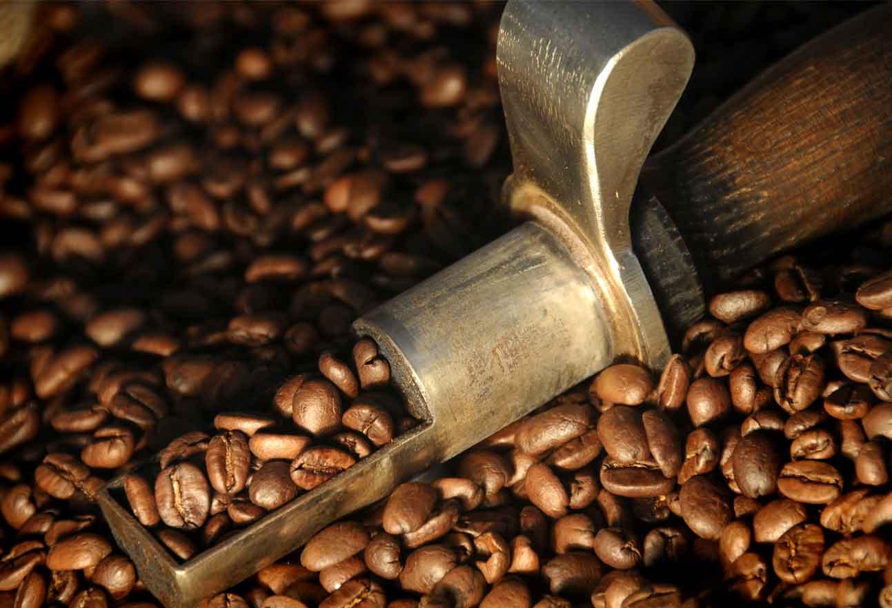 USDA: Dự báo sản lượng cà phê Colombia năm 2020 - 2021 phục hồi trước tác động của COVID-19 - Ảnh 1.