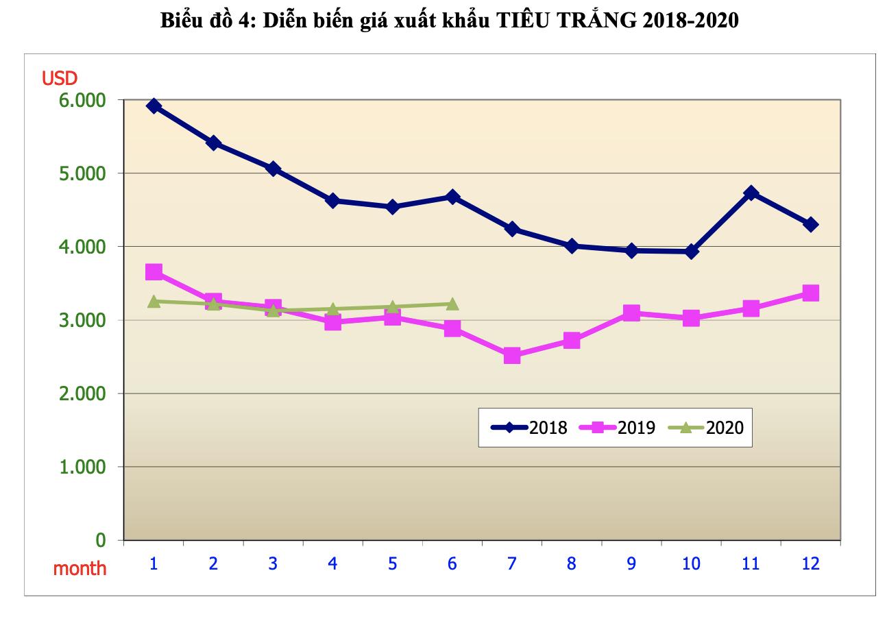 Sản lượng tiêu Việt Nam năm 2020 giảm 15% - Ảnh 2.