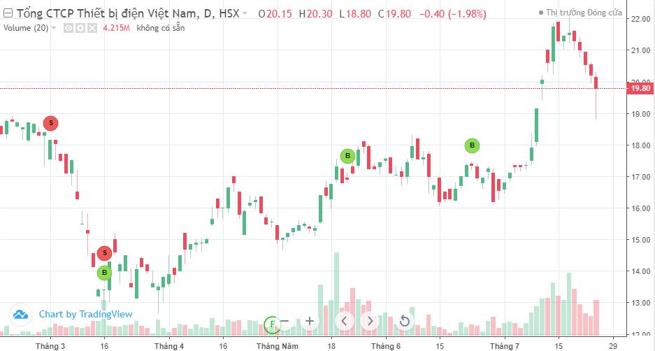 Đầu tư Đỏ chưa thể thoái vốn toàn bộ tại Gelex - Ảnh 1.