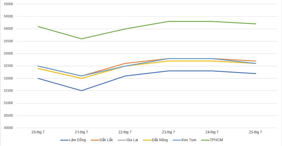 Giá cà phê hôm nay 26/7: Tăng nhẹ 200 đồng/kg trong tuần qua, giá tiêu vẫn duy trì ổn định - Ảnh 1.