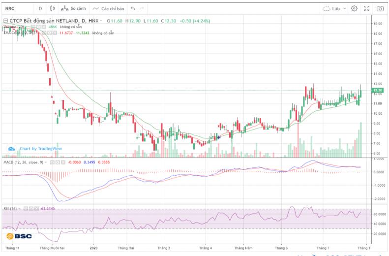 Cổ phiếu tâm điểm ngày 30/7: NRC, SAB, PPC - Ảnh 1.