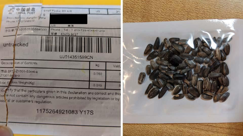 Mỹ cảnh báo nông dân không gieo hạt giống lạ gửi từ Trung Quốc - Ảnh 1.