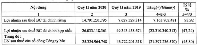Hải Phát Invest báo lãi quí II giảm 47% so với cùng kì do dịch COVID-19 - Ảnh 1.